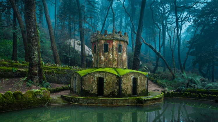 sintra-portugal-nature-images